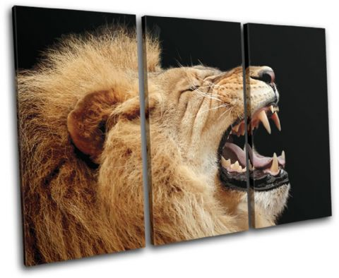 Lion Roar Wild Animals - 13-1393(00B)-TR32-LO